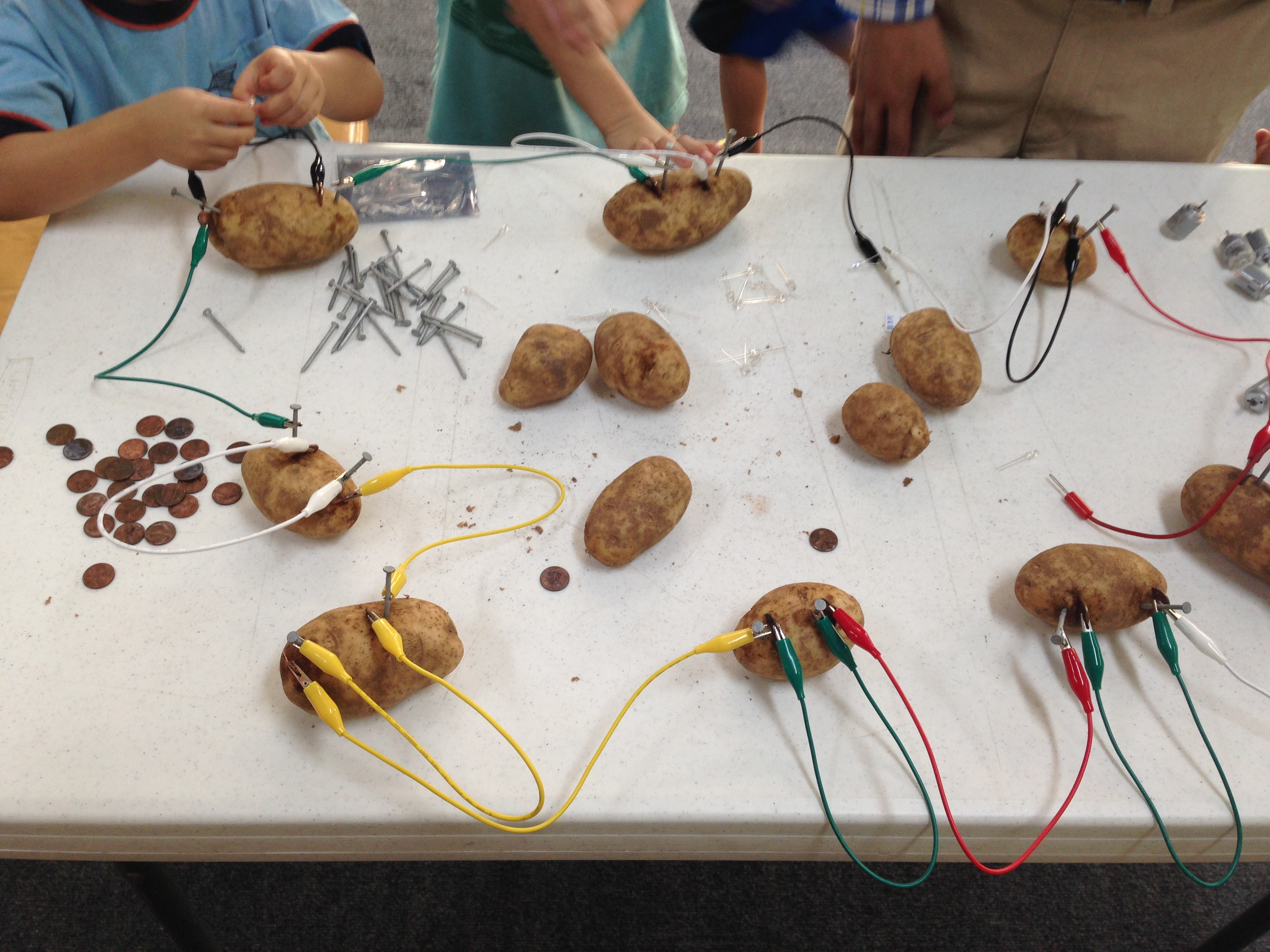 how to build a potato battery
